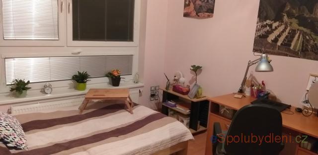 hledm spolubydlen pronjem bytu Opatov, Vysoany | Praha 4